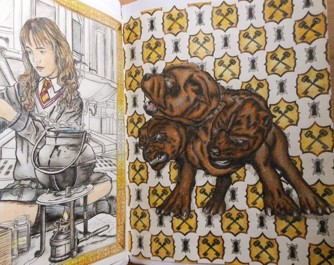 Harry Potter Coloring Book Colouring Books Enchanted Livros Vintage Pages