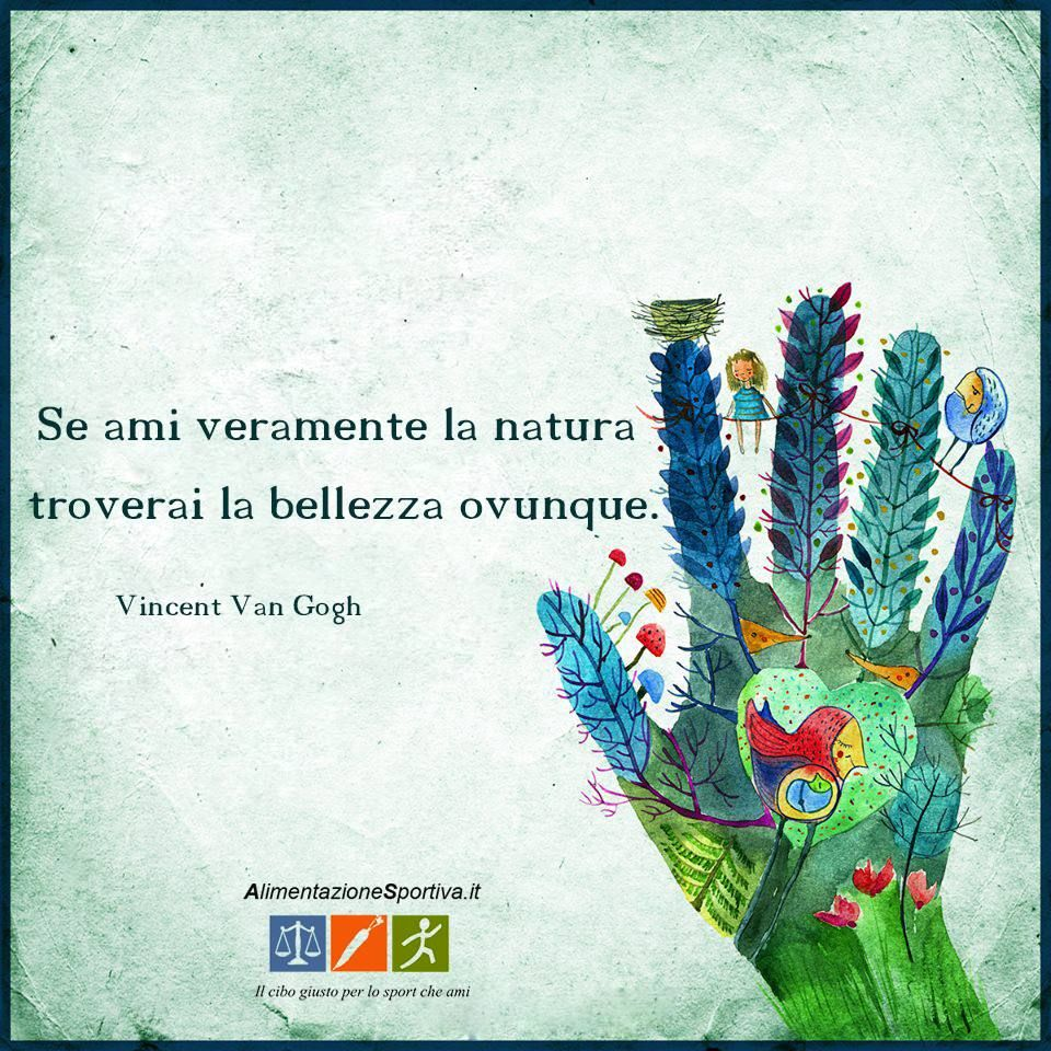 Se Ami Veramente La Natura Troverai La Bellezza Ovunque Vincent Van