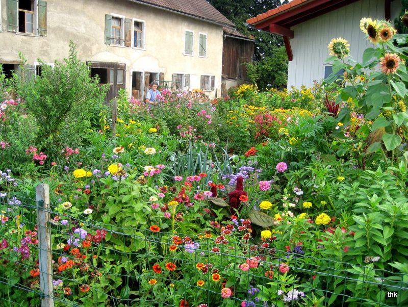 bauerngarten: anlegen, gestalten und bepflanzen | rosenbogen, Terrassen deko