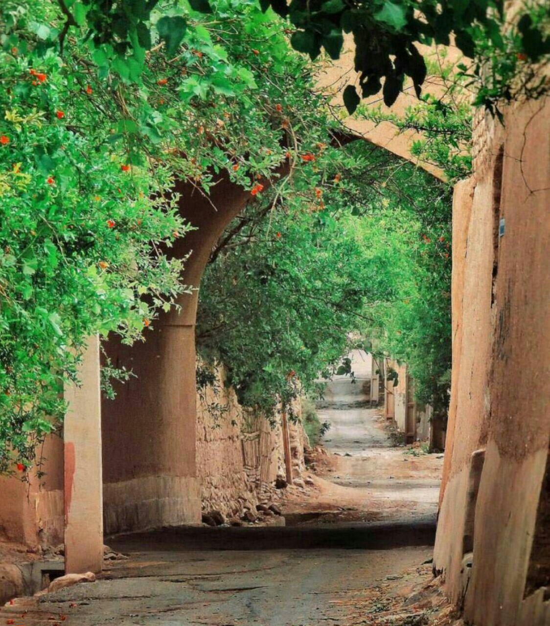 کوچه های تفت ( #یزد) شاید كمتر كسی باور كنه كه وسط شهر كویری یزد ...