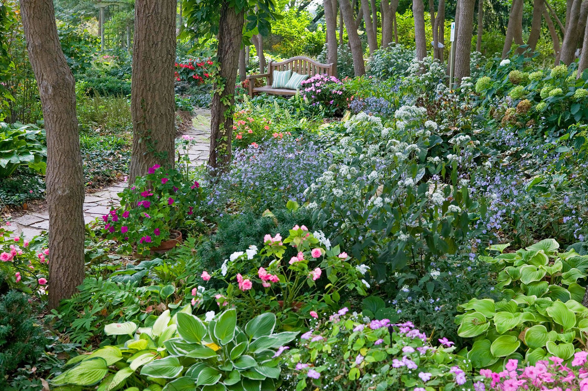 Shade Garden Design Ideas That Prove You Can Grow Colorful Plants Anywhere
