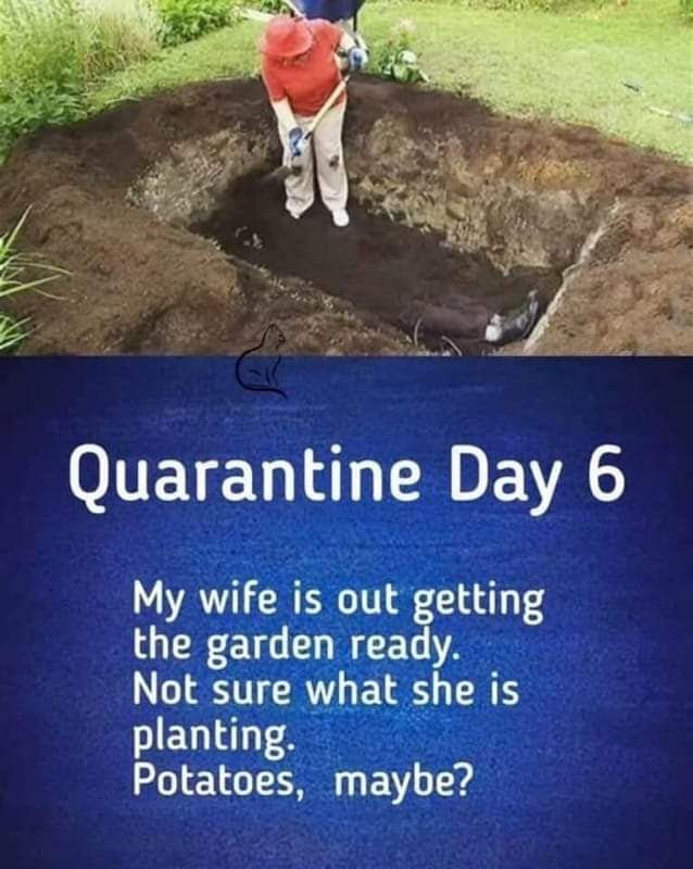 45+ Coronavirus Memes To Help Your Pass The Quarantine Time! | Money Life Wax