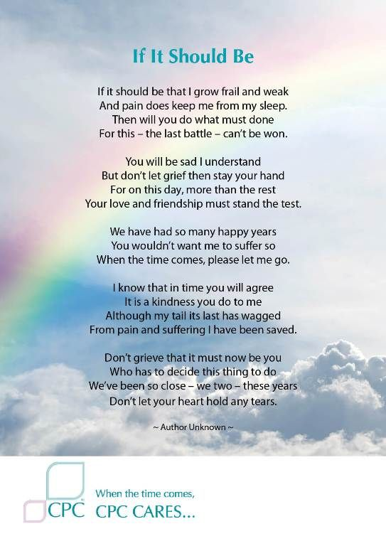 Can I Take Bereavement For My Dog Dying