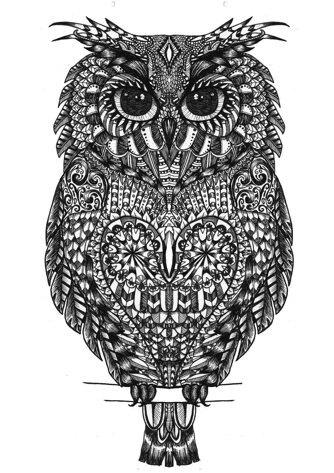 Owl zentangle street art and illustrations