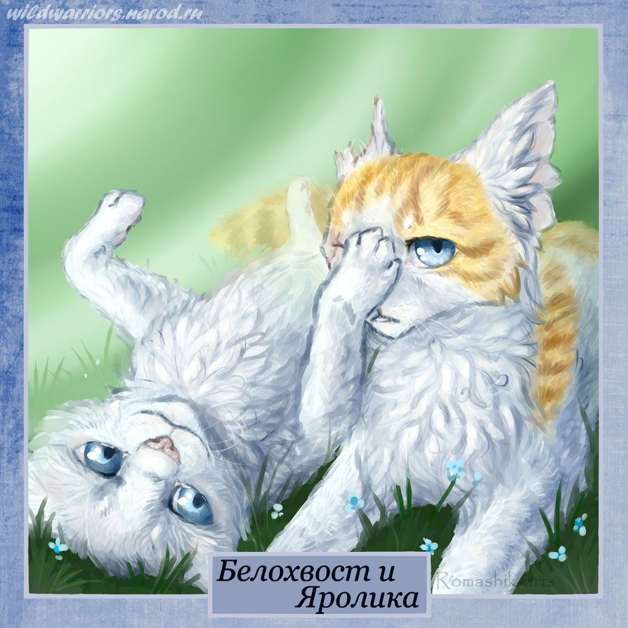 Cloudtail and Brightheart. Warriors by Romashikarts on