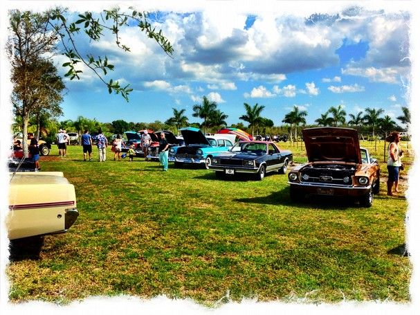 Come see the collector and classic cars on display in Endless Summer Vineyard & Winery's festival area, while listening to the classic sounds of one of the areas premier bands: Out on Bail. | Fort Pierce, FL