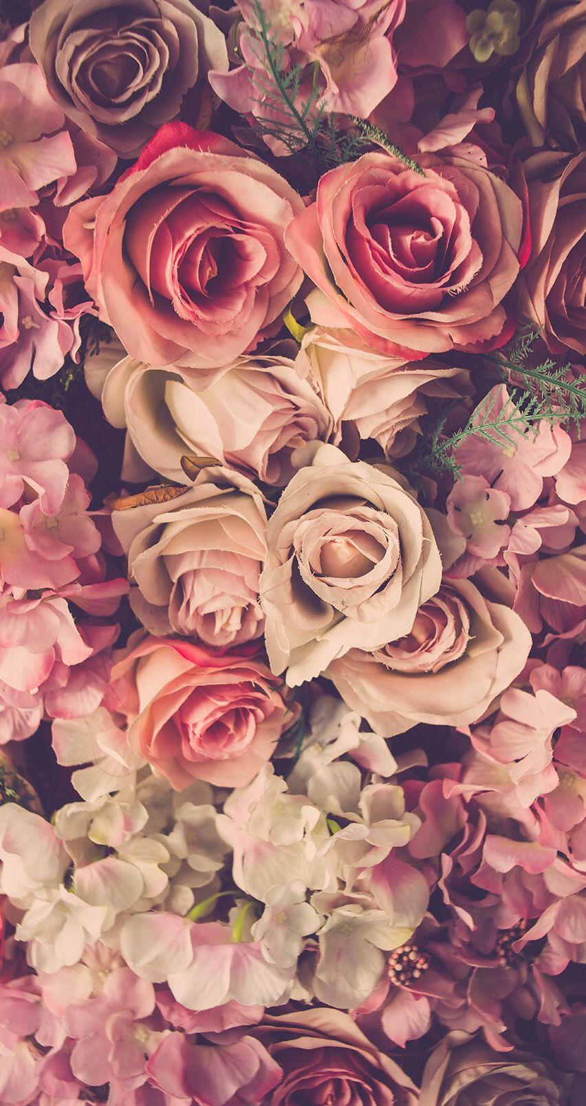 Pin Di Jane Doe Su Flowers Nel 2020 Sfondi Iphone Sfondi