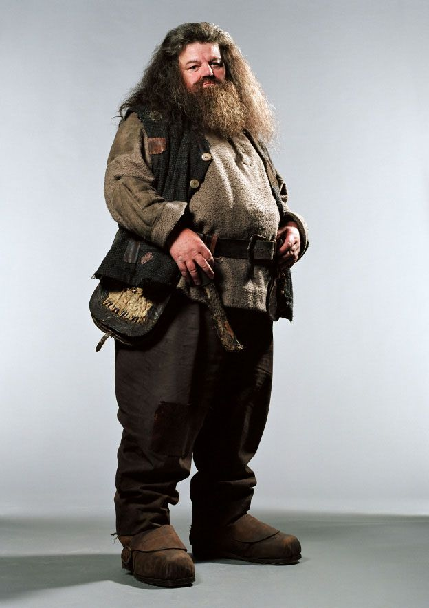 Hagrid, one of my favorite characters.