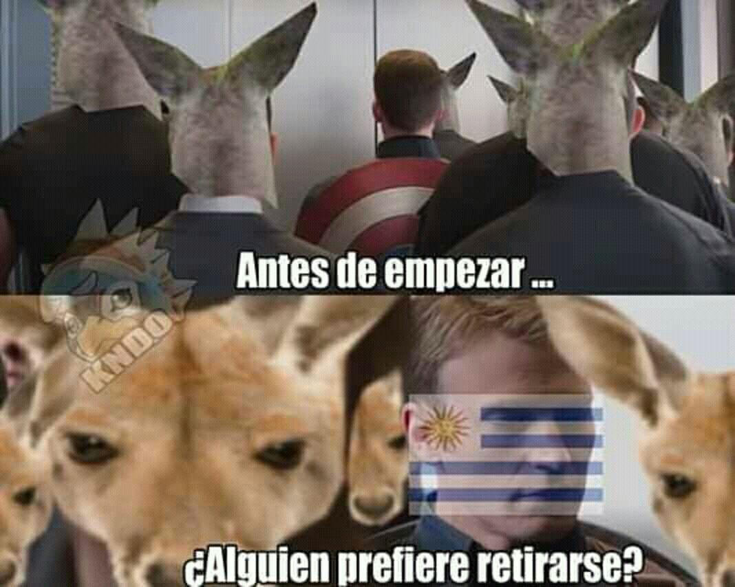 Son Robados 2 0 La Invacion De Canguros En Uruguay Memes Divertidos Memes Jorge Drexler