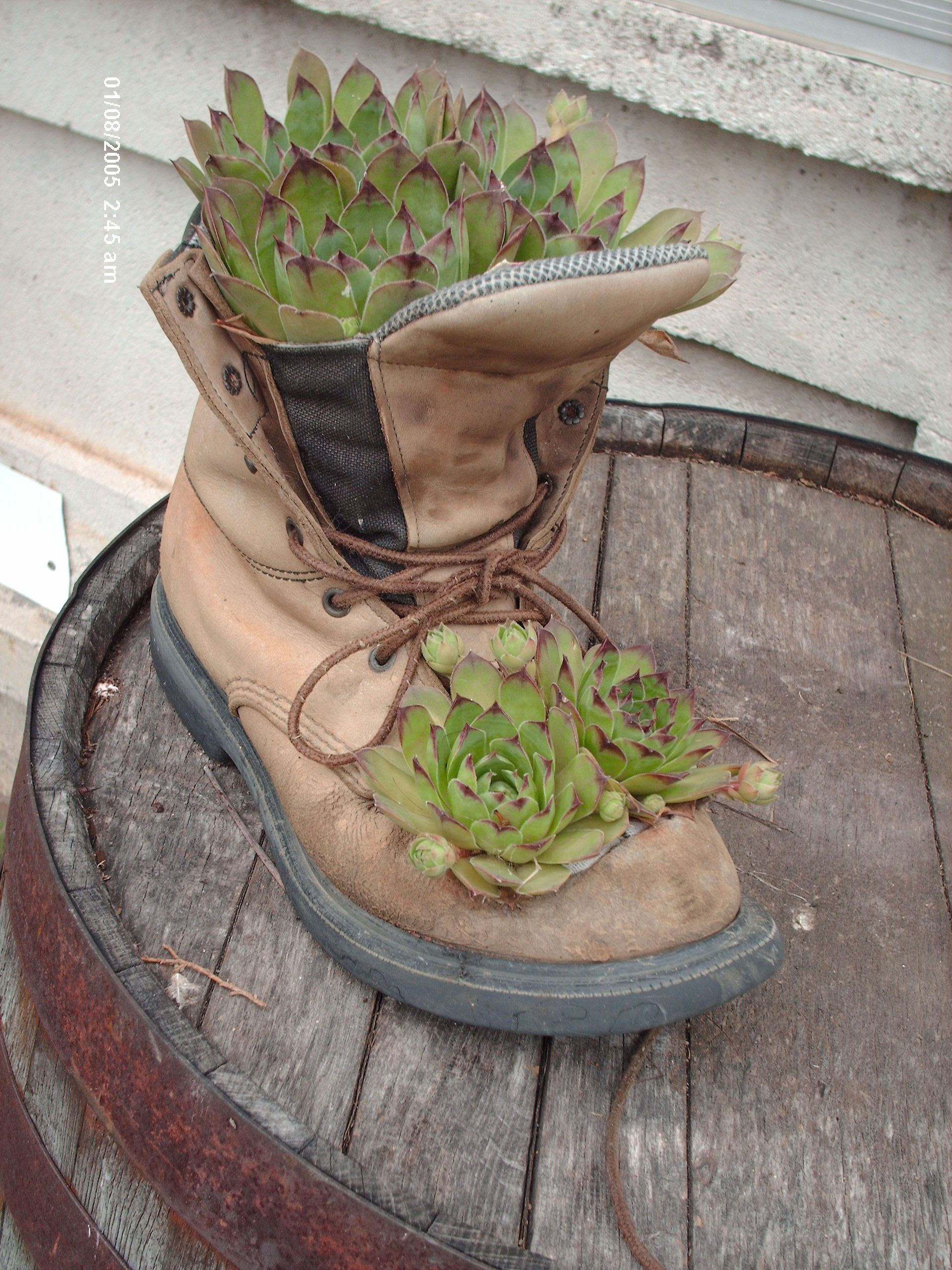 Boot Planters As Center Pieces Auction Off Thrift Shop And Some