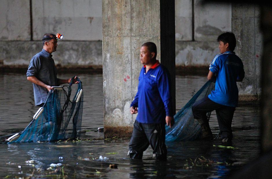 Die Arbeiter steigen mit großen Netzen ins Wasser.