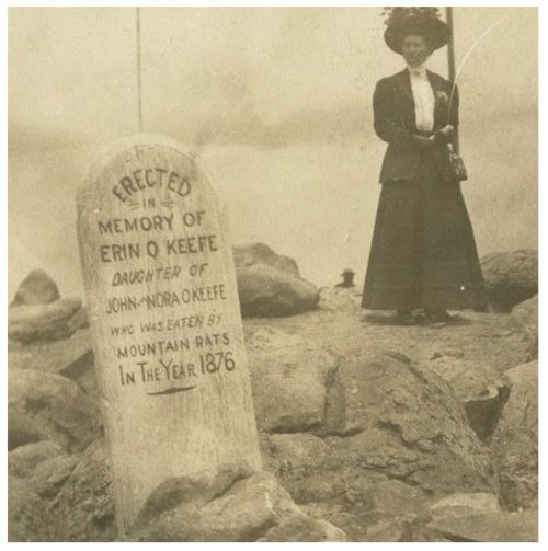 """Victorian tombstone, """"Eaten by Rats"""", 1876."""