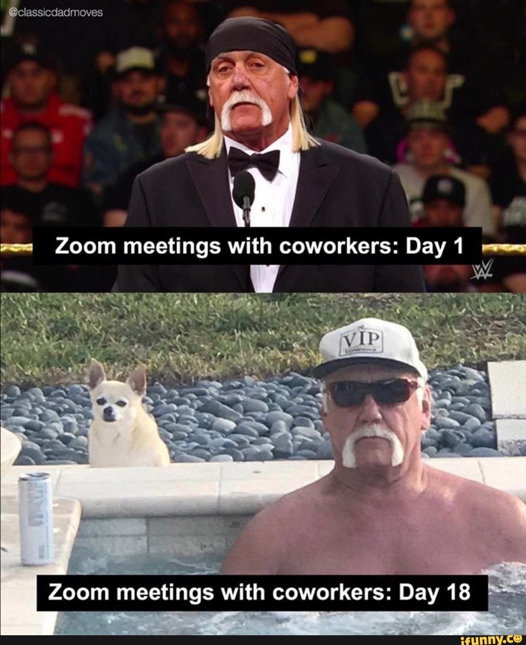 Zoom Meetings With Coworkers Day 18 Ifunny Funny Memes Funny Pictures Stupid Memes