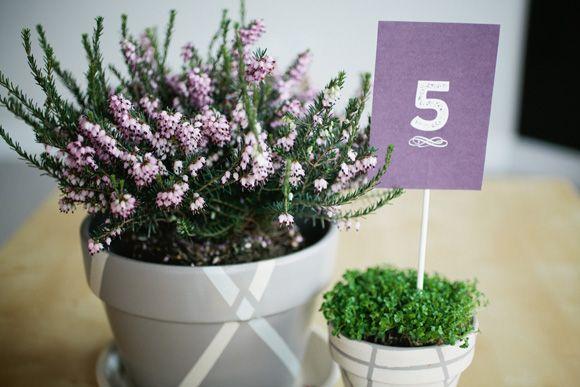 Simple potted plant centerpieces wedding decor