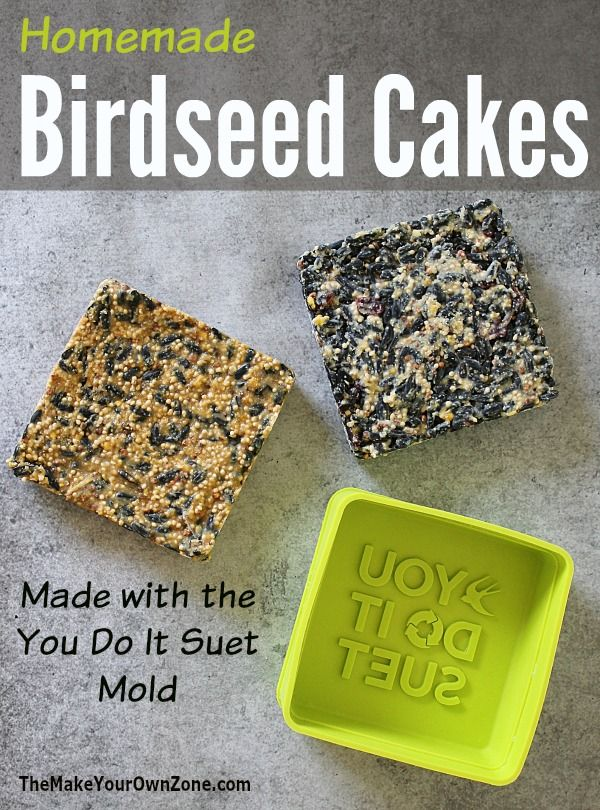How To Make Homemade Birdseed Cakes Using The You Do It