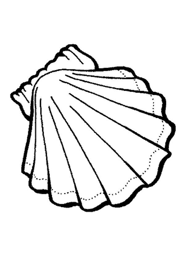 Free Coloring Pages Of Is Shell Coloring Pages Free Coloring Pages Coloring Pages For Kids