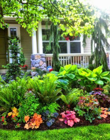 shade garden 24 cheap landscaping