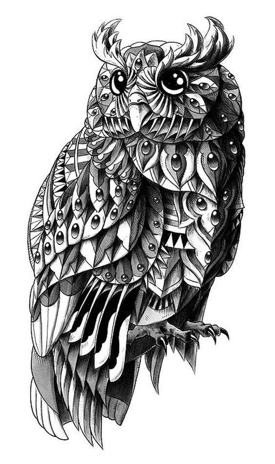 Os Detalhes De Bioworkz Tatuagem Coruja Arte De Coruja E