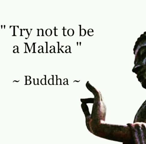 Try not to be a Malaka!!! | Quotes | Funny greek quotes, Funny greek