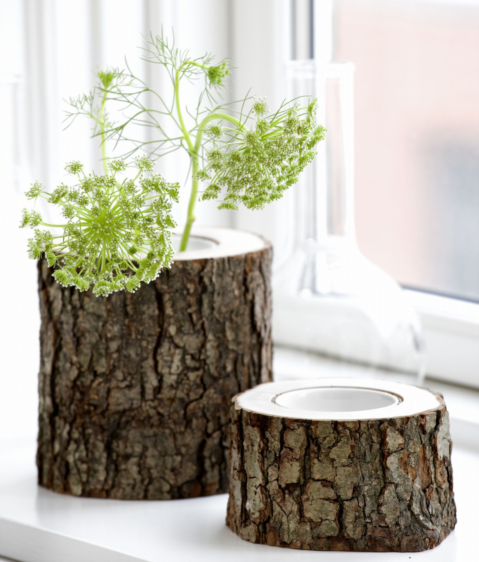 Tree stump vases this is cool could you make a tree stump tree stump vases this is cool could you make a tree stump reviewsmspy