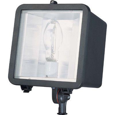 nuvo lighting 1 light flood light bulb type 1 - Nuvo Lighting