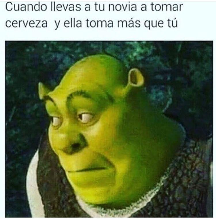 Pin By Sara Gachuz On Paisas Shrek Memes Funny Memes Cartoon Memes