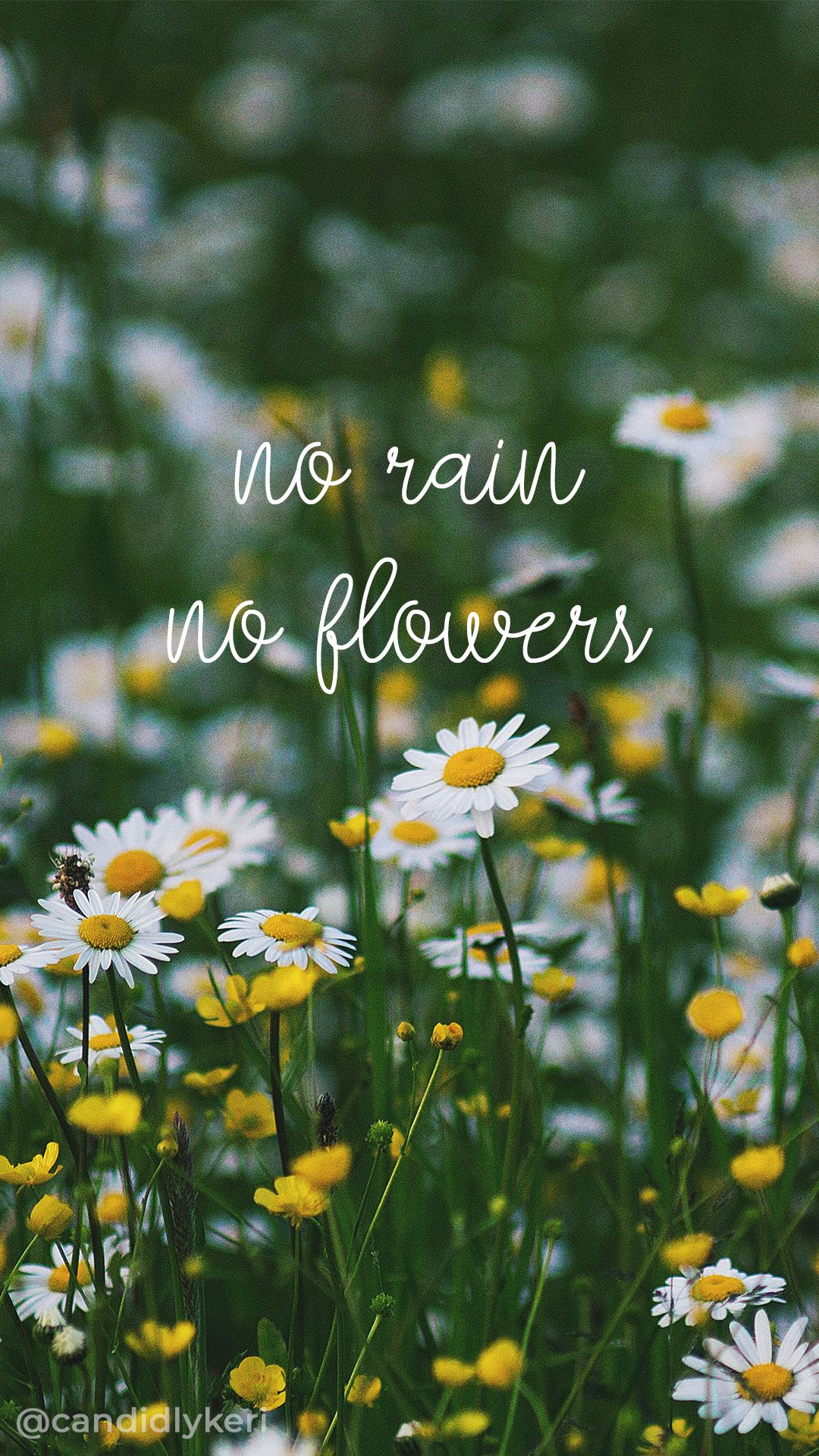 Pin by Nikki Powers on Wallpaper Me Flowers quotes