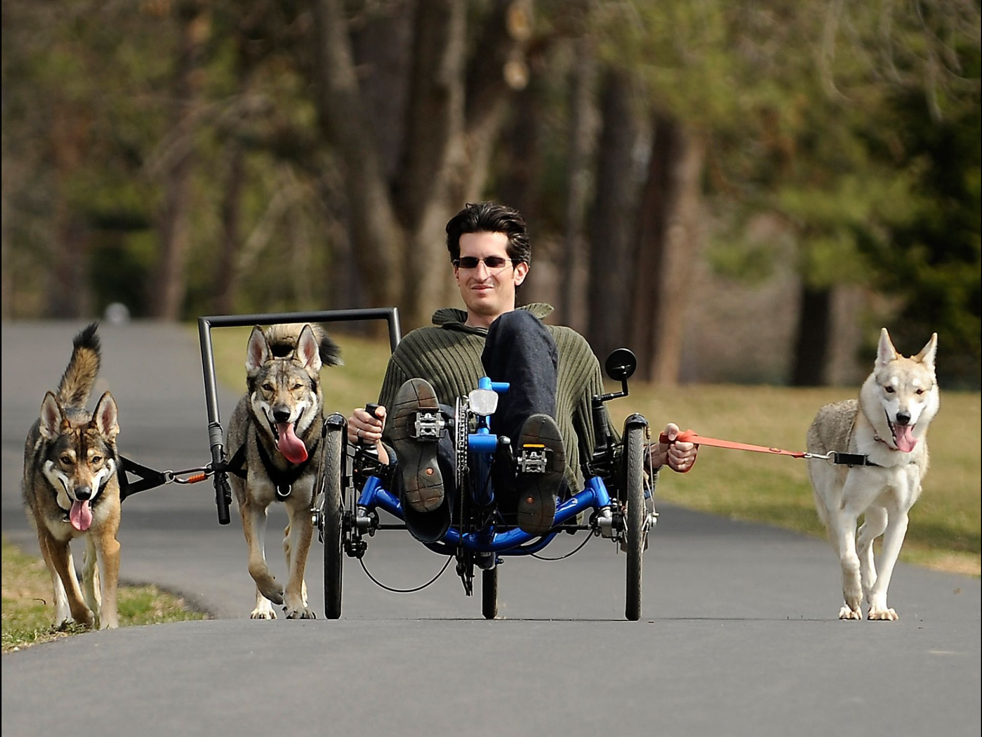 Ben Premack Rides His Custom Recumbent Bicycle As His Dogs Pull