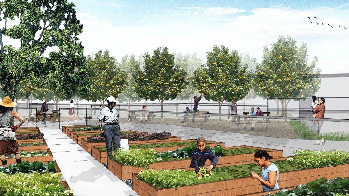 4 Dd Community Garden Community Gardening Urban