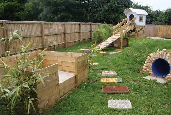 DIY Dog Sensory Garden - PetDIYs.com | Dog backyard, Dog ...