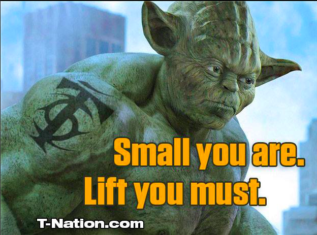 Workout Motivation Meme Funny : Listen to yoda and read t nation.com daily! #tnation #yoda
