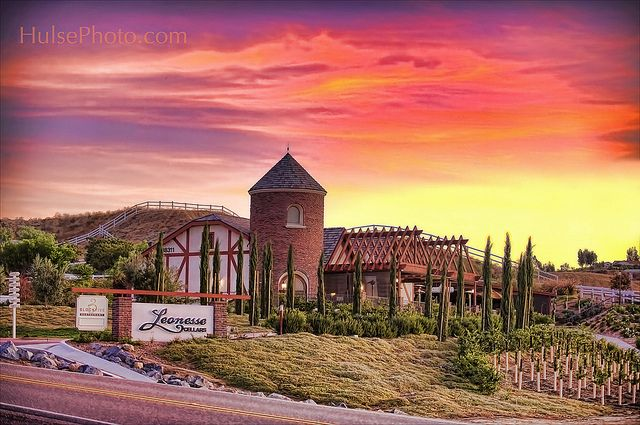 Temecula Wineries Leoness Cellars Our Winery