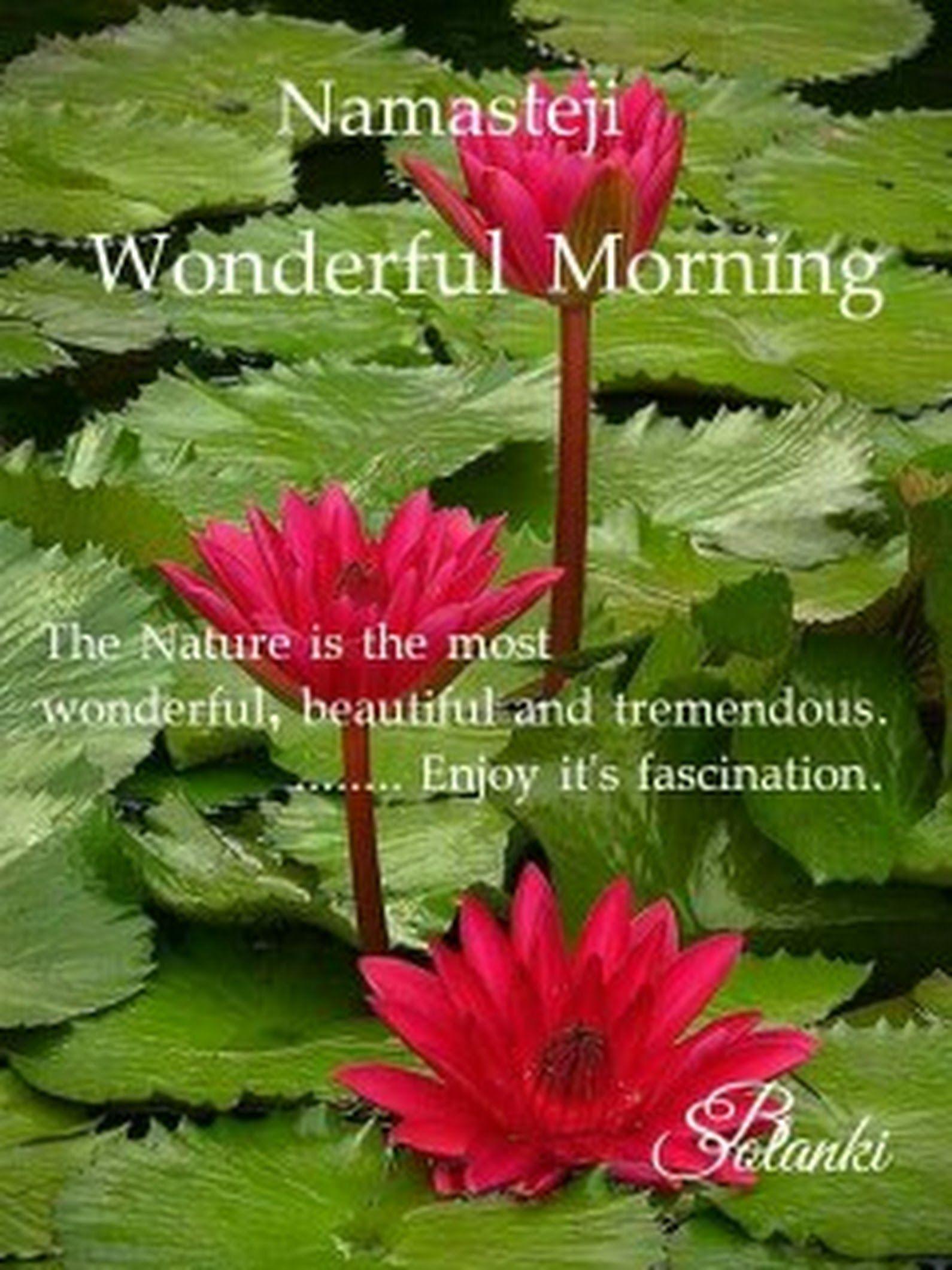 Hello Friends Good Morning Ji Hv A Nice Time Meera