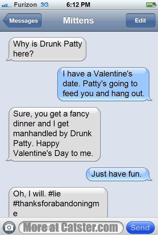texts from mittens the valentines day edition - Valentines Text Messages