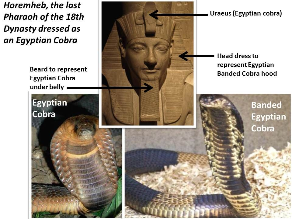 pharaohs serpent head dress serpent power pinterest serpent