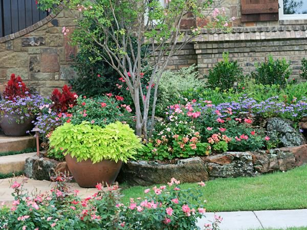 Landscape flower beds spring texas tree maintenance for Best flowers for flower bed