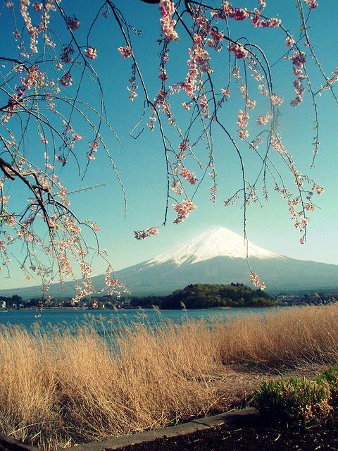 Nosso guia: http://globolivros.globo.com/livros/lonely-planet-japao  Fuji-San (Mt.Fuji), 2012富士山 by ★Tsuki★, via Flickr