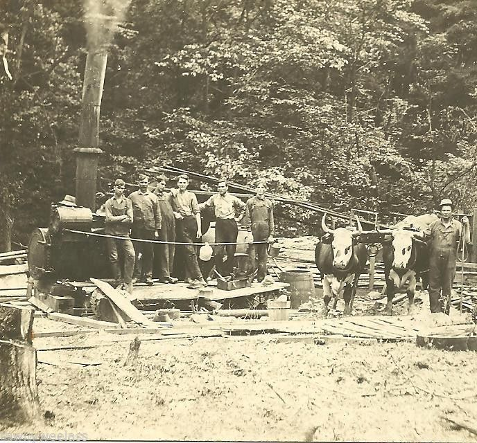 LOGGING IN MICHIGAN~REAL PHOTO~IRON RIVER~UPPER PENINSULA~STEAM ENGINE~