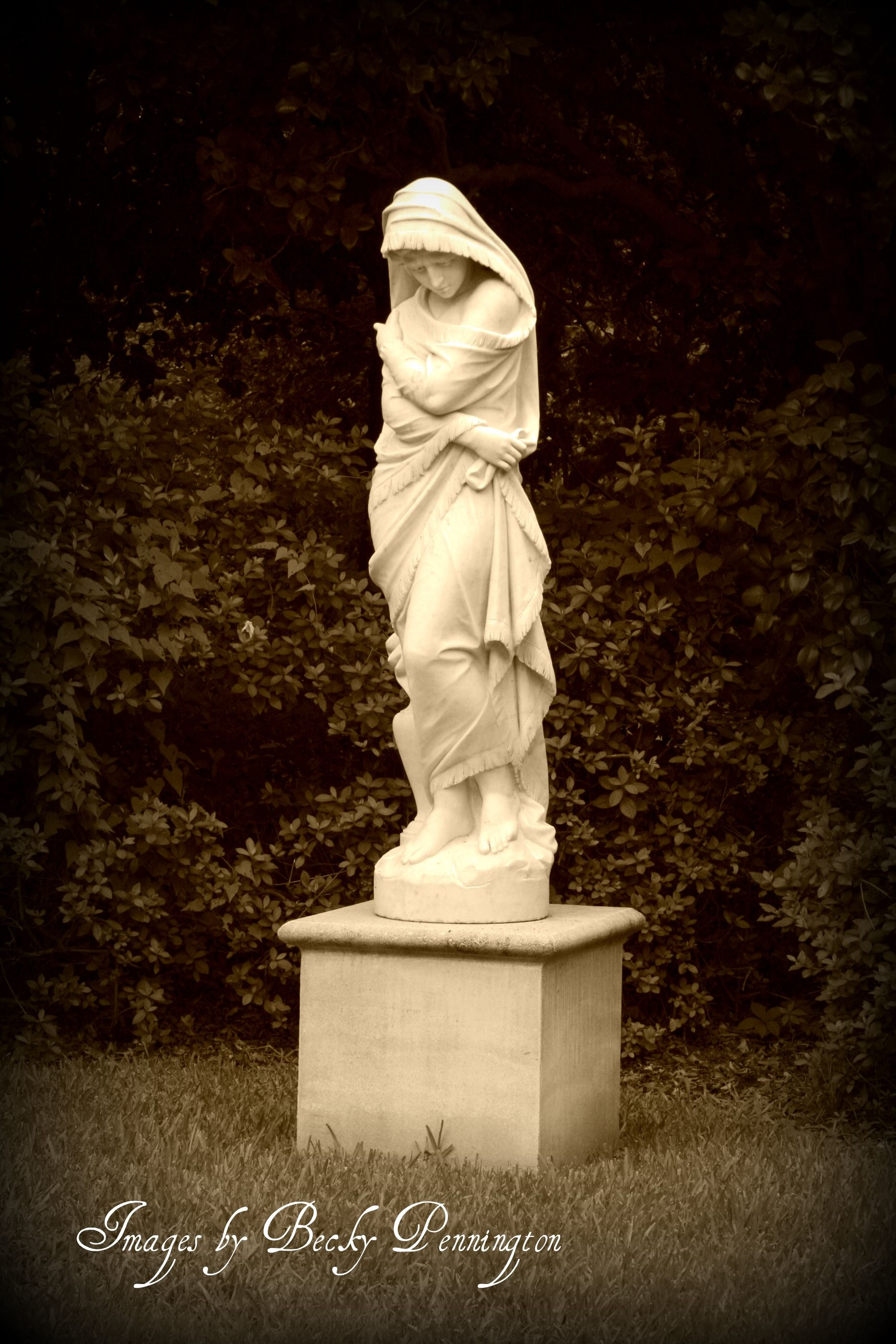 One Of The Beautiful Garden Statues Middleton Place
