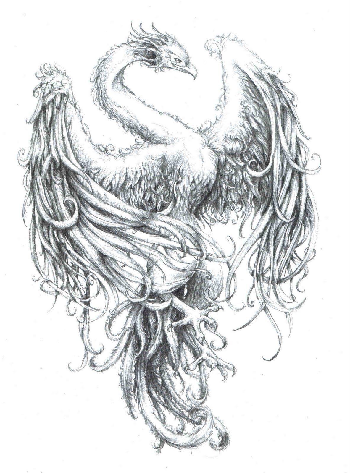 эскизы и картинки феникса вызову