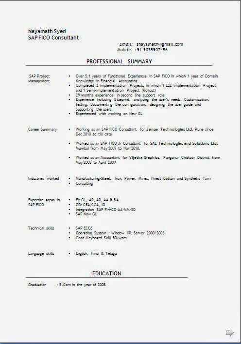 best biodata format Sample Template Example ofExcellent Curriculum - user experience consultant sample resume