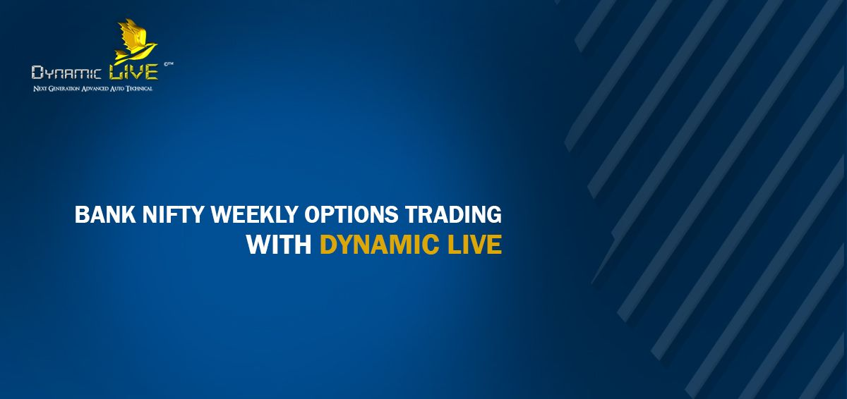 What are the option trading levels and their terms and conditions? - Webull