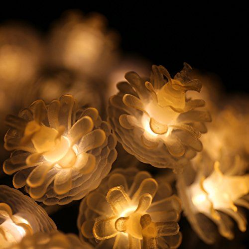 WINTOP Battery Operated 2M/20LEDs Warm White Pinecone LED String