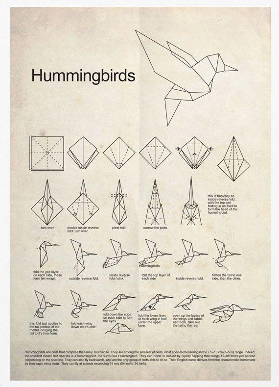 Hummingbird Origami Poster Print | Fun | Origami, Origami ... - photo#9
