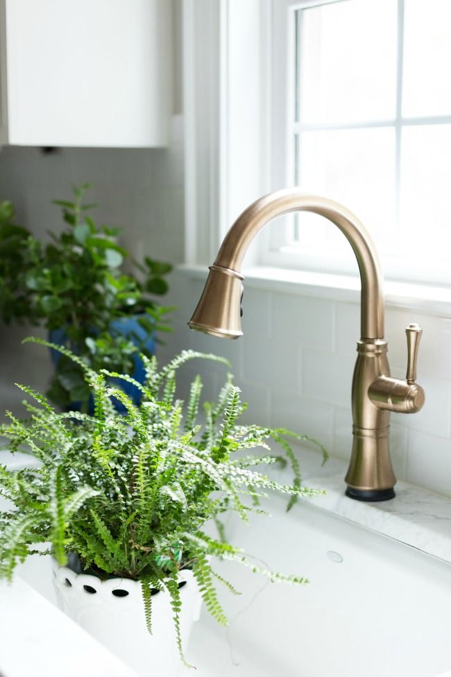 cassidy delta faucet champagne bronze