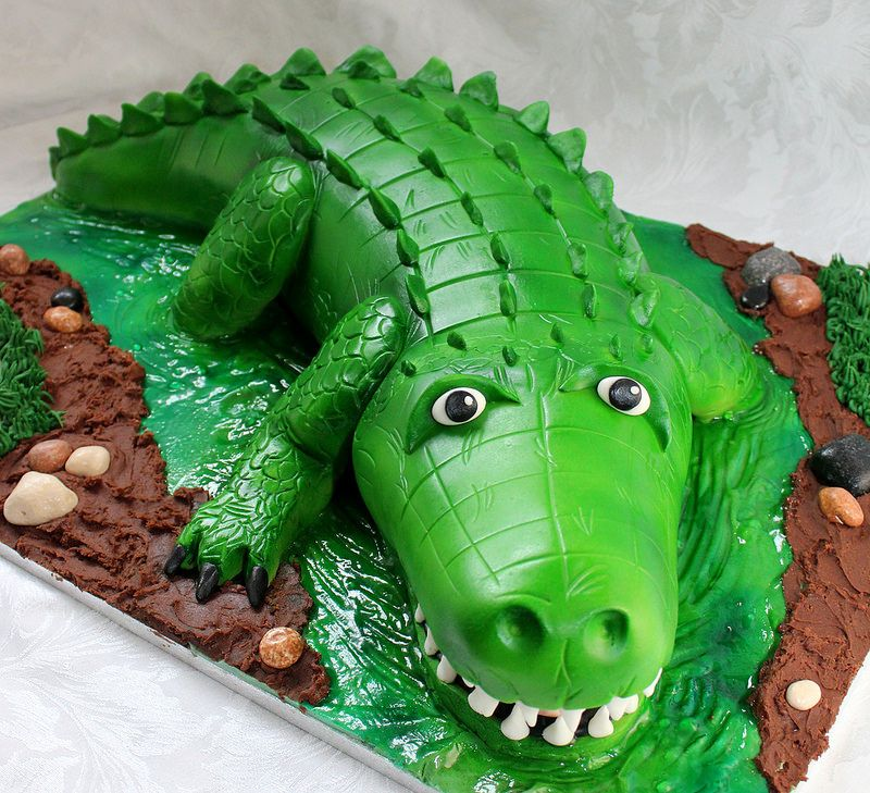 Stupendous Crocodile Birthday Cake With Images Crocodile Cake Funny Birthday Cards Online Alyptdamsfinfo