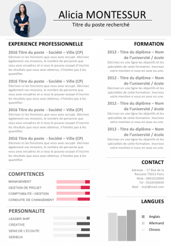 Cv De Manager Encadrement D Equipe Exemple Cv Cv Manager Exemple Lettre Motivation