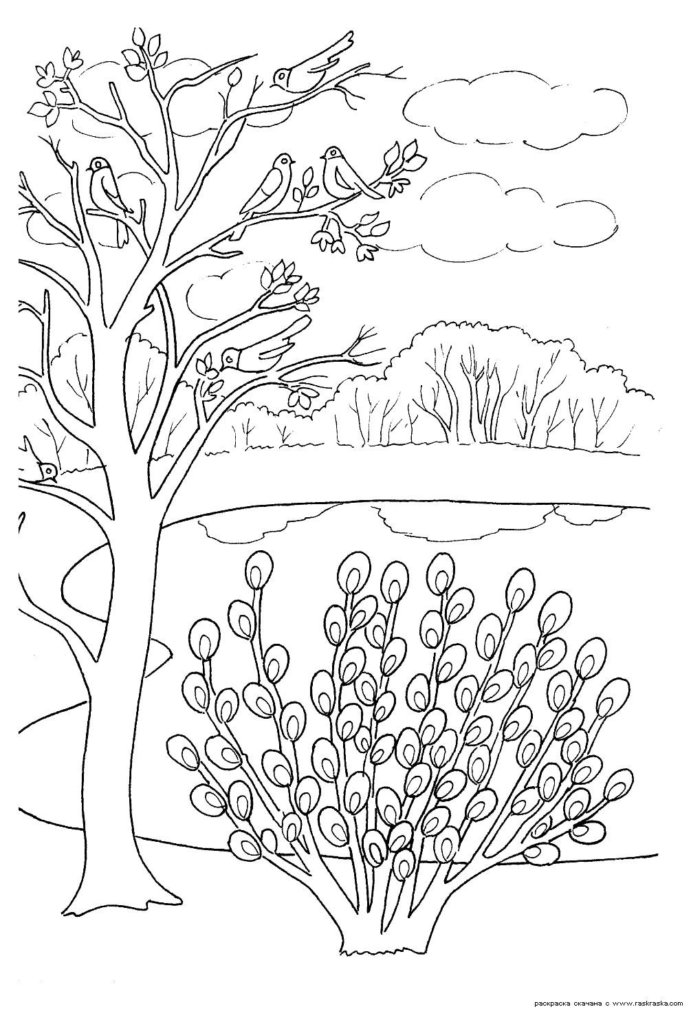 Farben Von Blumen Pflanzen Natur Kinder Druck Raquo Page 8 Coloring Pages Colouring Pages Color