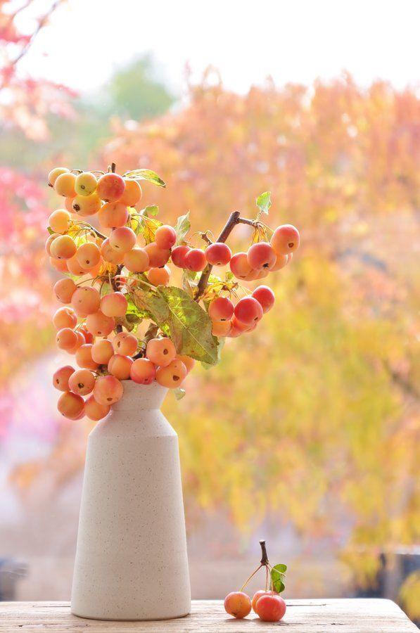 Tischdeko Tischdekoration Herbst Herbstdeko Igel Filz Orange Braun Grun