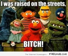 Funny Empire Meme Cookie Monster Google Search Sesame Street Muppets Childhood